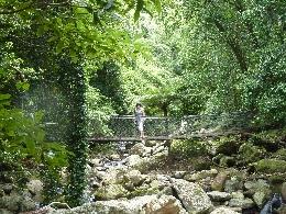 cascade minnamurra