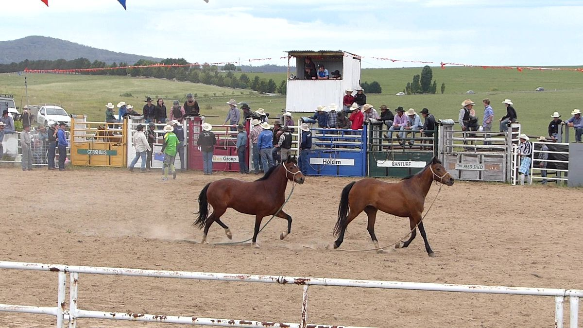 2015 Bugendore Rodeo
