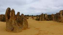 The Pinnacles Desert, Cervantes, Australie-Occidentale