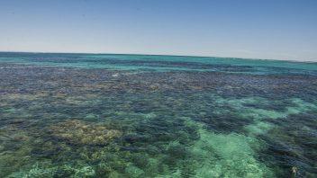 Coral Bay, WA