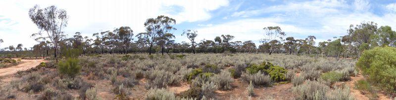 Dundas, Western Australia