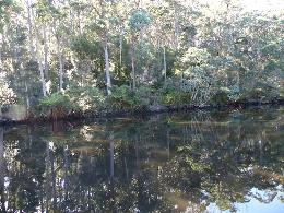 Arthur River TAS