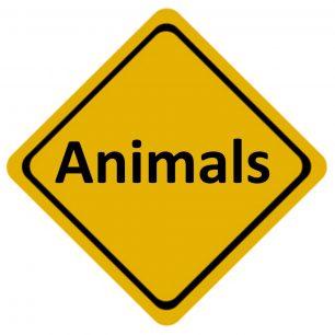 aussie-animals-road-sign