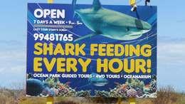 Ocean Park Aquarium, Francois Peron National Park Australie-Occidentale