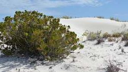 Eucla, Australie-Occidentale