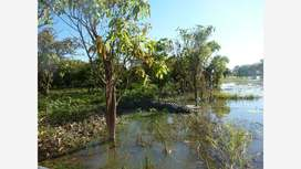 Corroboree Billabong, Marrakai, Northern Territory
