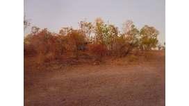 Edith Falls, Nitmiluk, Northern Territory