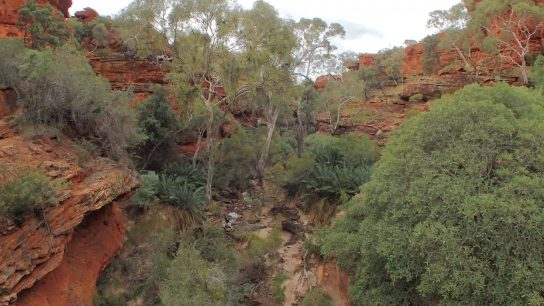 Kings Canyon Walk, Petermann, Northern Territory