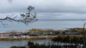 booderee-jervis-bay-Blacks-harbour