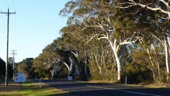 Bundanoon-NSW-P1250241