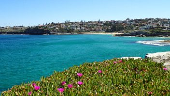 Bondi Beach, NSW