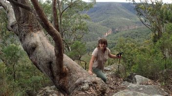 NSW-Morton-National-Park-Tooths-walking-track