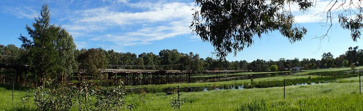 NSW-Narrandera