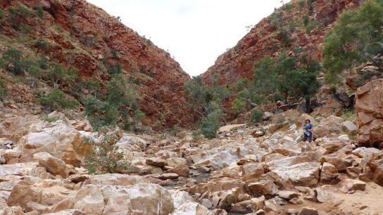 Redbank Gorge, Mount Zeil, Northern Territory