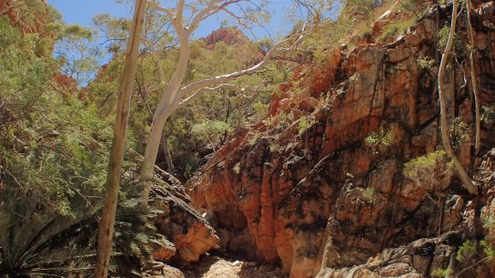 Standley Chasm, Hugh, Northern Territory
