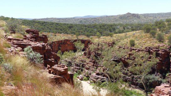 Trephina Gorge, Hart, NT