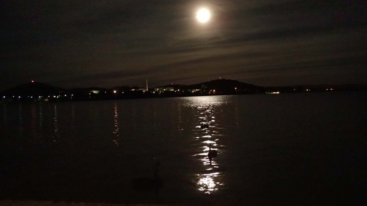 Lake Burley Griffin, Canberra, Australian Capital Territory