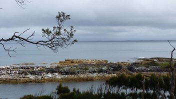 booderee-jervis-bay-Blacks-harbour