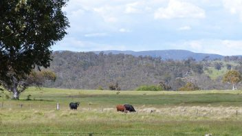 adaminaby-nsw-surroundings