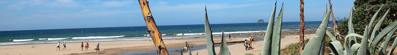 Kiwitrip – J2: Hot Water Beach