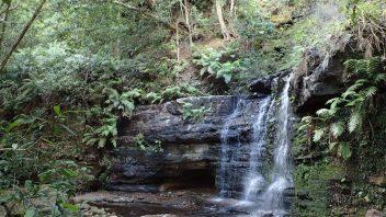 Fairy-Bower-Falls-Walk